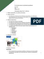 Analisis Del Auditor Informatico