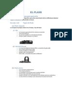 El_flash_Sergio_Celada.pdf
