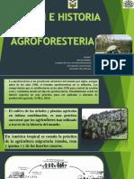 Sistemas Agroforestales Origen