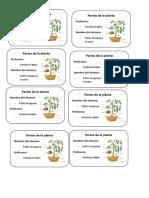 Partes de La Plata Fabio