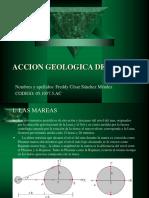 ACCION GEOLOGICA DEL VIENTO.ppt