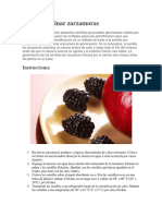 Cómo germinar zarzamoras.docx