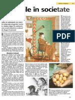 Drogurile.pdf