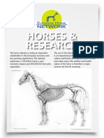 Equine Research.pdf
