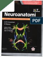 karil6.neuroanatomi-min.pdf