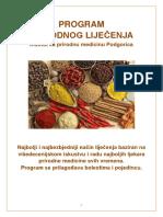 205468125-Program-Lijecenja.pdf