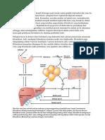 1543664400711_Hampir semua jenis lemak keuali beberapa asam lemak rantai pendek diabsorbsi dari usus ke dalam limfe usus.docx