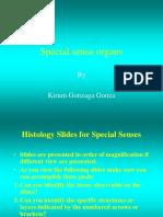 Special Sense Organs