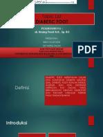 Diabetic Foot - Ibnu Eet