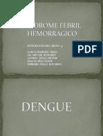 Síndrome Febril Hemorragico Expo