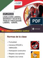 Presentacion Del Seminario Accidente de Trabajo Investigacion y Procedimiento de Inspeccion