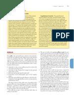 brachial plexus.pdf