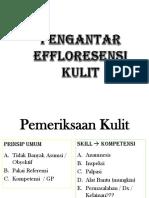 Pengantar Effloresensi