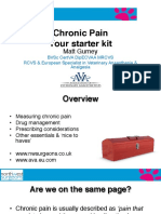 LVS Chronic Pain Ws