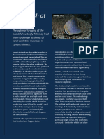 fussy fish at risk-magazine article by maria browne