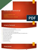 Arteria Femoral [Autoguardado]