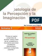 Psicopatologia del pensamiento e imaginacion