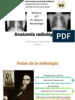 anatomaradiologicaneumo-170314085158