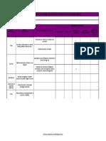 3 Formato Matriz de Jerarquizacion