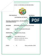 INFORME N° 01 MANTEQUILLA DE MANI