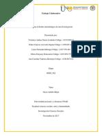 Elaborar el diseño metodológico de una Investigación.docx