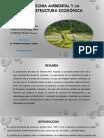Geotecnia Ambiental y La Infraestructura Económica