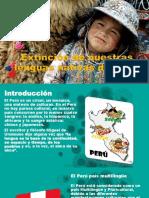 Extinción de Nuestras Lenguas Nativas Del Perú