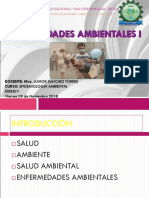 ENFERMEDADES AMBIENTALES I.ppt