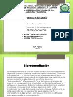 BIORREMEDIACION.pptx
