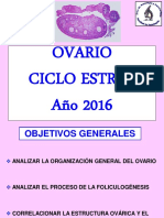 Ovario y ciclo estral