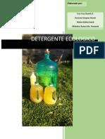 Detergente Ecológico proyecto