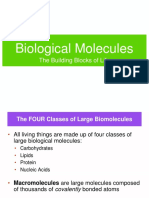 1. Biological Molecules