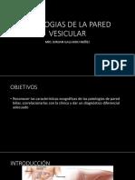 Patologias de La Pared Vesicular