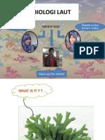Biologi Laut