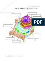 Label Plant Cell