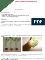 PDF TP22 Bilan