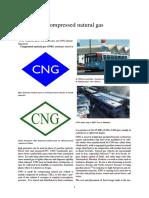 compressed-natural-gas-pdf.pdf