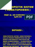 Kuliah Magister Hematopoitik System II