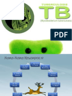 Pharmaceutical Care Farmasis Tuberkulosis
