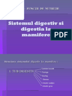 SD_si_digestialamamifere_X.ppt
