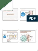 Bioeletrogênese 2