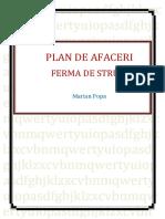 Plan-de-Afaceri-Ferma-de-Struti.docx