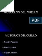 2 MÚSCULOS DEL CUELLO.ppt