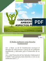Presentacion Delitos Ambientales.ppt