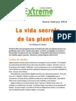 Resumen Vida Secrete Plantas