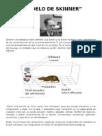 Exposicion Skinner Modelo