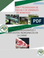 clase10_compuestos quimicos carne.pdf