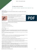 Zika Vírus - o Que é, Transmissão, Sintomas