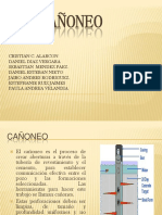 exposicionproduccioncaoneo-120528150830-phpapp02