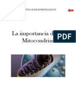 AI Mitocondrias